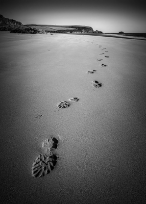 Footprints_In_The_Sand - 15 C1R1M