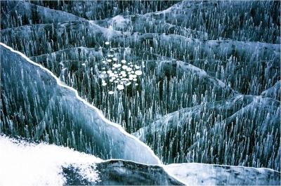 Ice Patterns 2