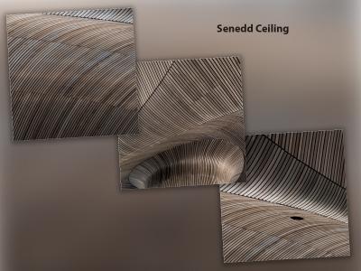 SENEDD CEILING DETAIL 1
