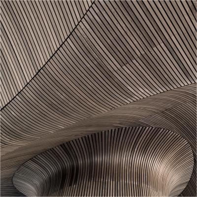 Senedd Ceiling Detail 3