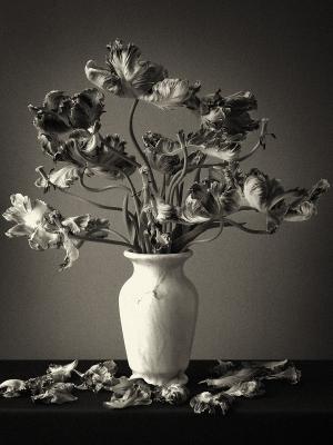 floral arrangements 3