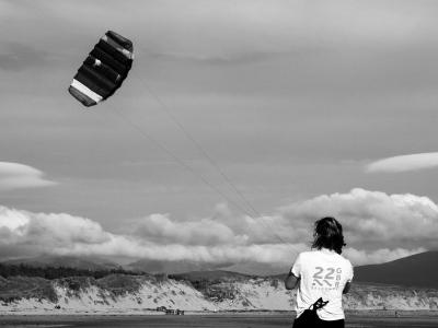 The Kite Flyer 31