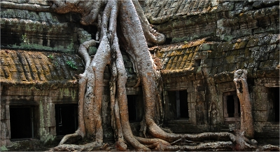 Ruins at Angkor Wat